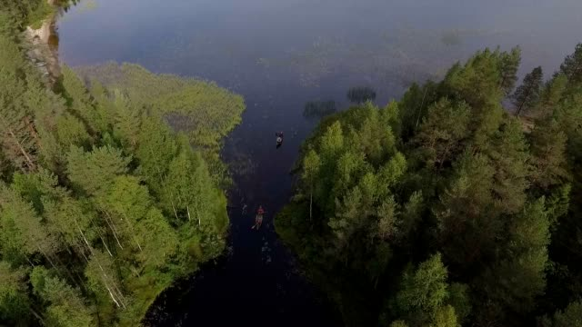 Wilderness lake in Scandinavia video