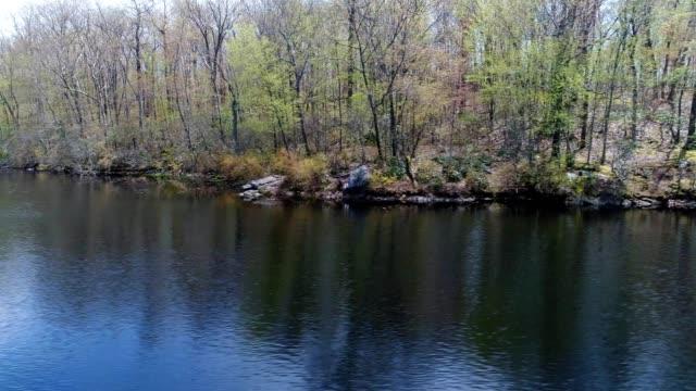 Wilderness lake shore