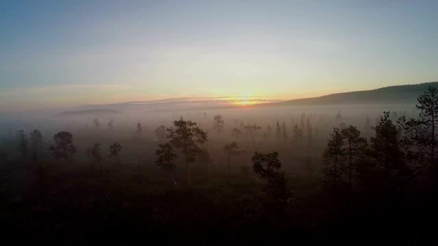 vildmarken träsk - finland bildbanksvideor och videomaterial från bakom kulisserna