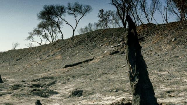 wildfire distruzione - brent video stock e b–roll