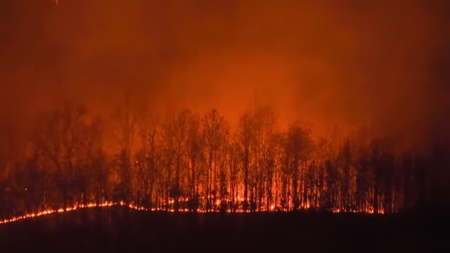 vídeos de stock e filmes b-roll de wildfire on the mountain at night - labareda