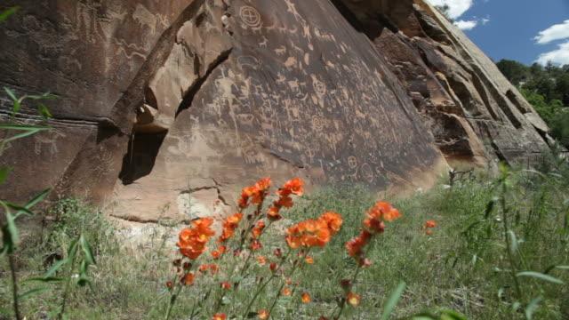 Wildflowers and Native American Newspaper Rock petroglyphs Utah video