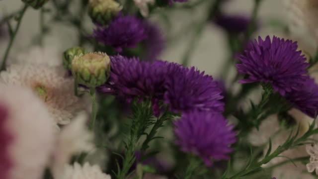 野生の花の花瓶 - 骨董品点の映像素材/bロール
