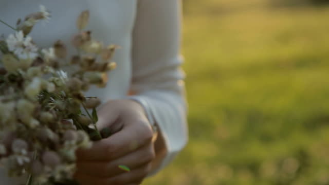 vídeos de stock e filmes b-roll de wildflowers in the hands of the girl close-up - granadilha