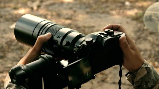 wildlife photography - fotografika filmów i materiałów b-roll