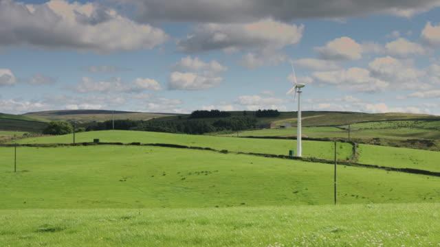 Wind Across Sunlit Field video