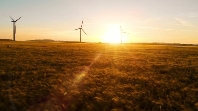 wind farm at sunrise - turbina a vento video stock e b–roll