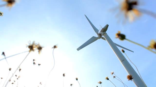Wind Farm on Spring Field video