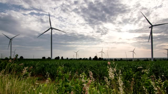 Wind farm. Wind turbines generating electricity. energy conservation concept video