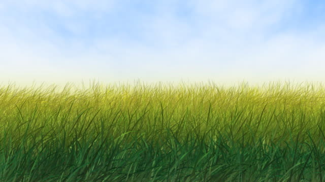 Wind in Grass