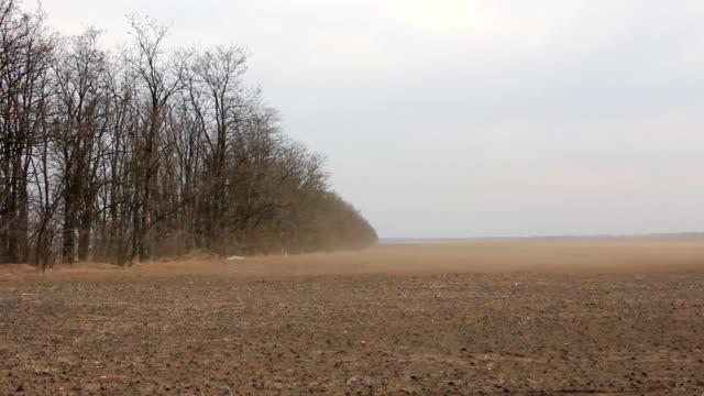 vídeos de stock, filmes e b-roll de vento no campo - erodido