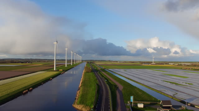 wind power and tulips field in Holland