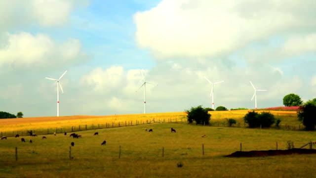 Wind power generators in Belgian countryside video