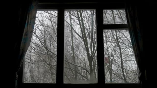vinden skakar träden och snön faller i skogsområde sett genom fönster - icicle bildbanksvideor och videomaterial från bakom kulisserna
