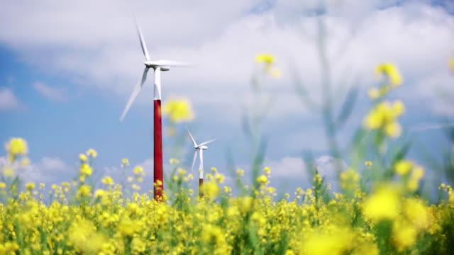 windkraftanlage im gelben rapsfeld - elektrischer generator stock-videos und b-roll-filmmaterial