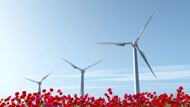 vídeos y material grabado en eventos de stock de turbina de viento en el campo de amapolas rojas - generadores