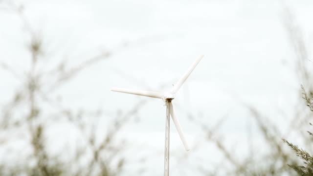 wind turbine with tree; greenery space video