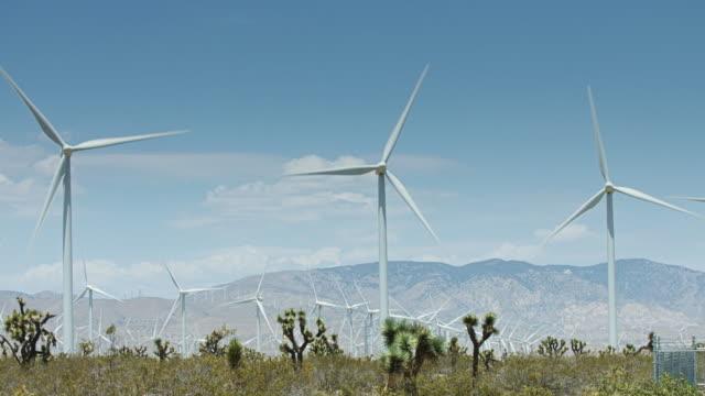 Wind Turbines and Desert Plants video