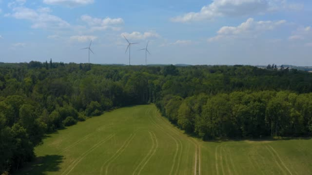 Wind turbines and trees