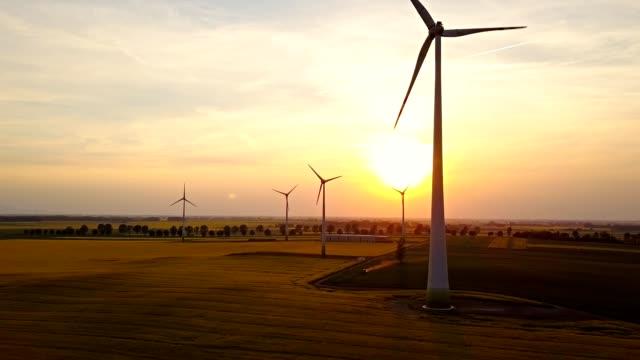 Wind Turbines at sunset over yellow rape flowers field video