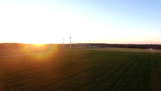 Wind turbines at sunset with copyspace video