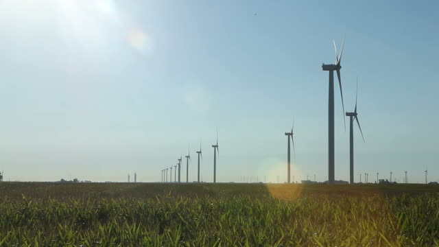 Wind Turbines Extending Into Distance video