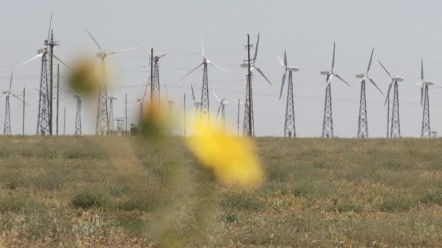 windturbinen in der wüste - elektrischer generator stock-videos und b-roll-filmmaterial