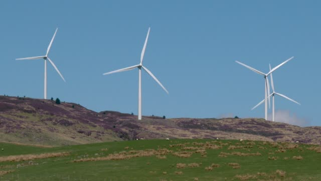 Wind turbines on a Scottish hillside A wind farm in rural Dumfries and Galloway, south west Scotland galloway scotland stock videos & royalty-free footage