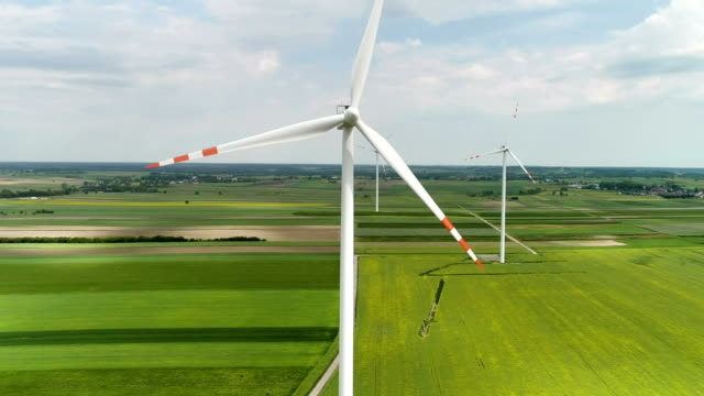 Wind turbines standing on a blooming fields of rape plants and wheat
