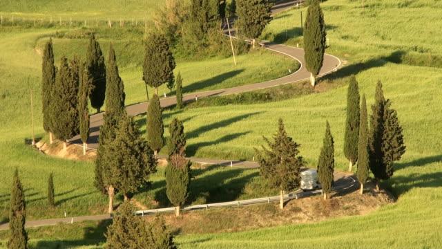 Winding Cypress Lane video