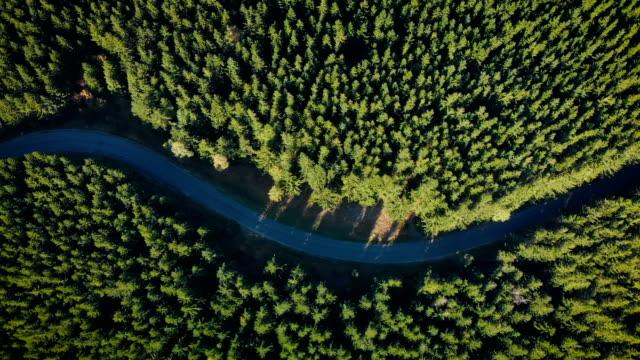 曲がりくねった山道 (図鳥瞰図) - 曲線点の映像素材/bロール