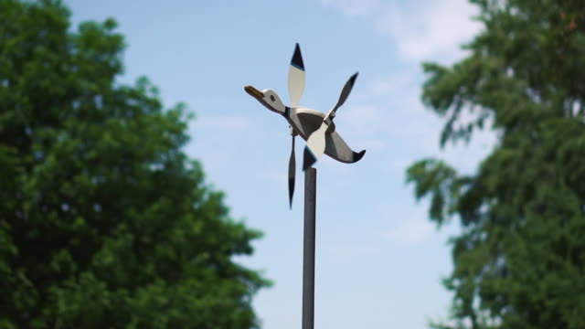 Windmill in the form of a duck with a propeller in a city park on the background of green trees and blue sky on a sunny day. Close-up. Slow motion Windmill in the form of a duck with a propeller in a city park on the background of green trees and blue sky on a sunny day. Close-up. Slow motion branch plant part stock videos & royalty-free footage