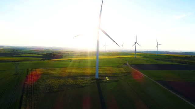 Windmills farm on agricultural ecologic fields video