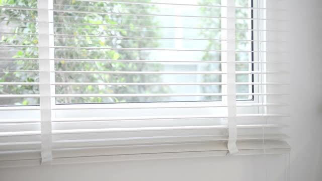 Window Blinds Closing video