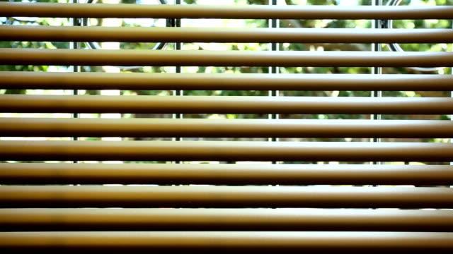 window blinds interior - store filmów i materiałów b-roll