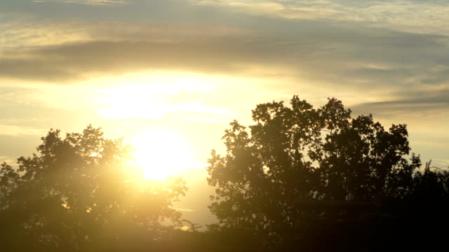 Window View From Car at sunbeams in 4K Slow motion 60fps video