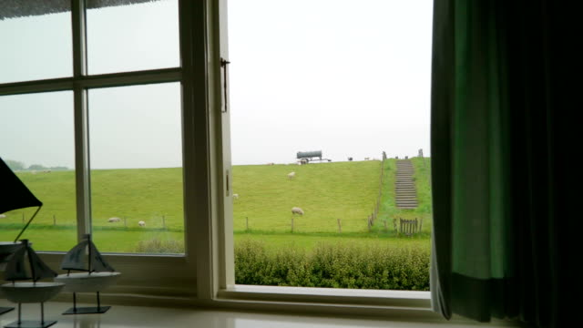 window view of the green hill with the sheeps - dutch architecture stock videos & royalty-free footage
