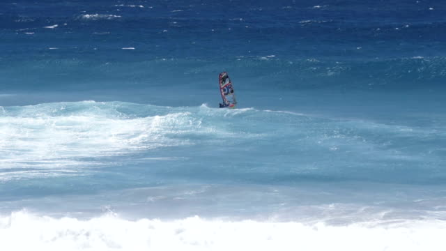 Windsurfer in big waves, Slow Motion video