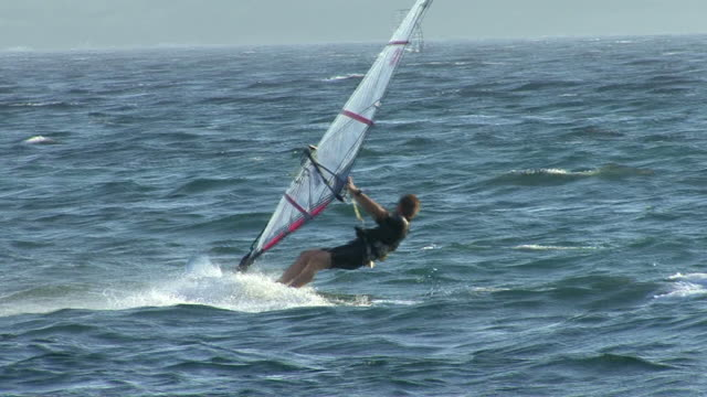 HD: Windsurfer  in the sea (slow motion) video