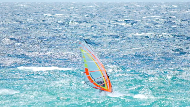 Windsurfing champion sailing on waves of blue ocean, summer vacation and sport video