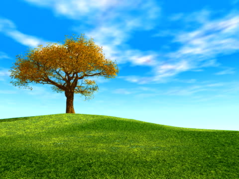 Windy Hill (NTSC) beautiful tree on the hill. Digitally created and rendered. multiple image stock videos & royalty-free footage