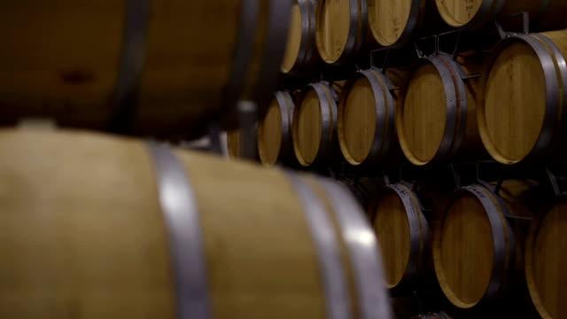 vídeos de stock e filmes b-roll de wine barrels in wine cellar - barrica
