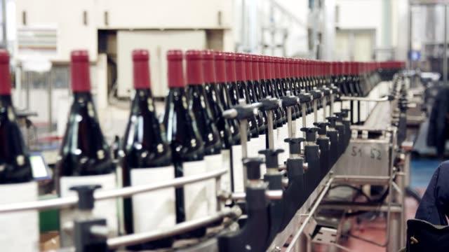 와인 병 생산 라인입니다. 병의 작성. 와인 유리병의 생산입니다. - 와인병 스톡 비디오 및 b-롤 화면