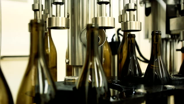 Wine bottles on conveyor belt video