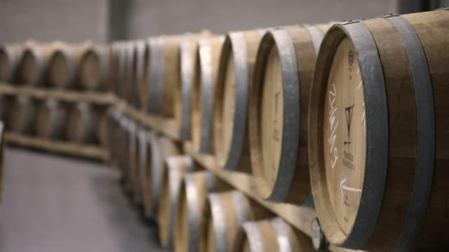 wine cellar full of wooden barrels - barile video stock e b–roll