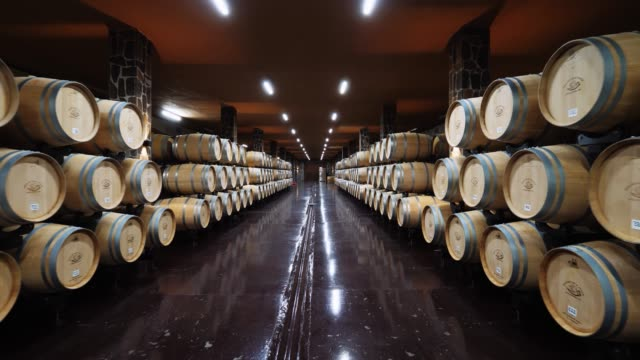 wine cellar vault barrels, wine barrel, oak barrel, aged wine. Motion forward in steadicam tasting stock videos & royalty-free footage