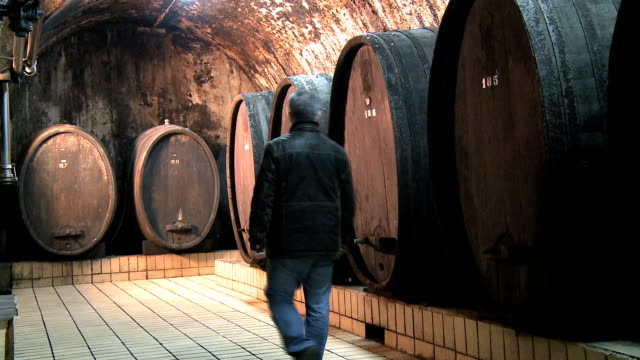 wine cellar video