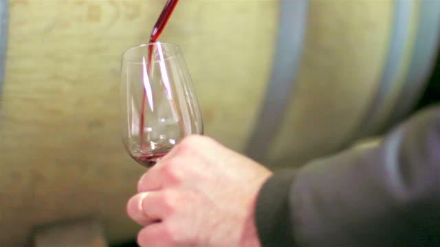 cantina di vini - barile video stock e b–roll
