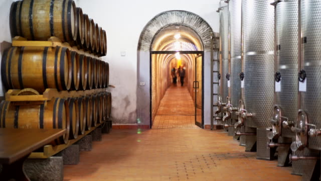 Wine cellar with large wooden and steel barrels, which are located near the walls. In the corridor of the cellar there is a group of people who came to the wine tasting and cheese