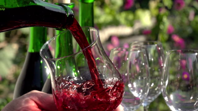 Wine Glass and Bottle in Hand video